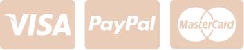 Pictogrammes des moyens de paiement du site Laurence M - Bijoux